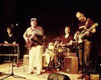 Publikum begeistert von Tino Gonzales und Band