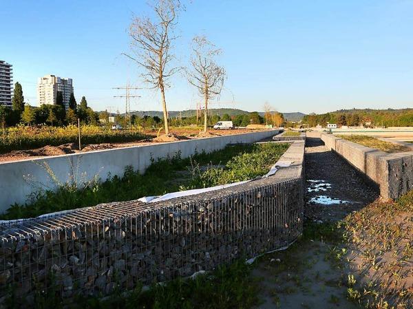 Kleine Vorgeschmack auf künftige Vergnügen: ein Rundgang über die Baustelle der Lahrer Landesgartenschau.