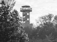 Feuer am Seeparkturm – Verdacht auf Brandstiftung