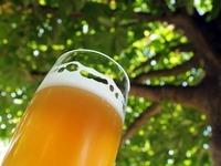 Die schönsten Biergärten in Südbaden für den Feierabend