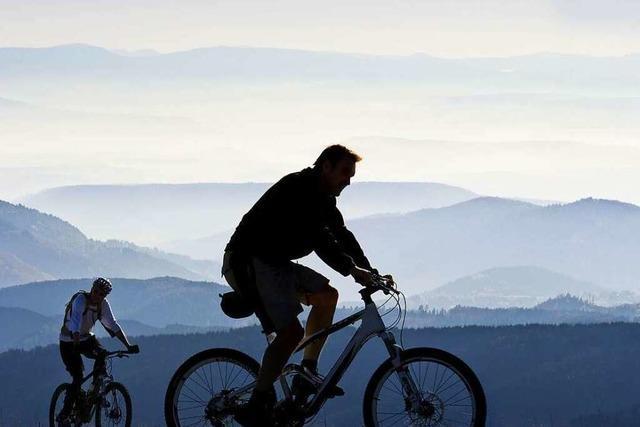 Ein Weinradweg soll Radfahrer begeistern