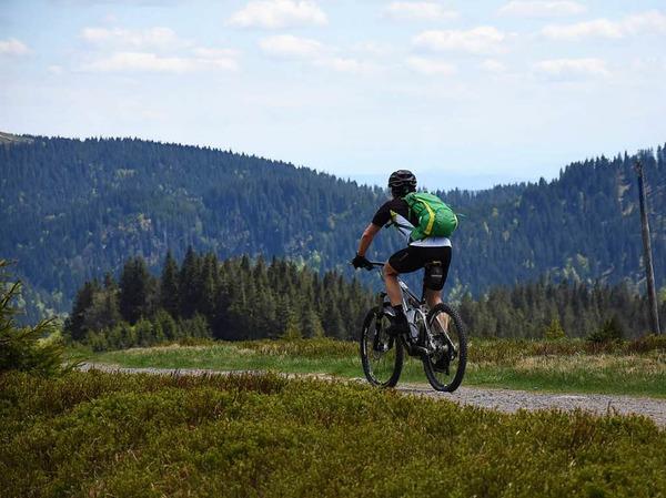 Eine geführte Tour der anderen Art: Förster des Landkreises Breisgau-Hochschwarzwald radeln mit Interessierten durch die Bannwälder der Region. Dabei geht es von Kirchzarten bis knapp unter den Feldberggipfel.
