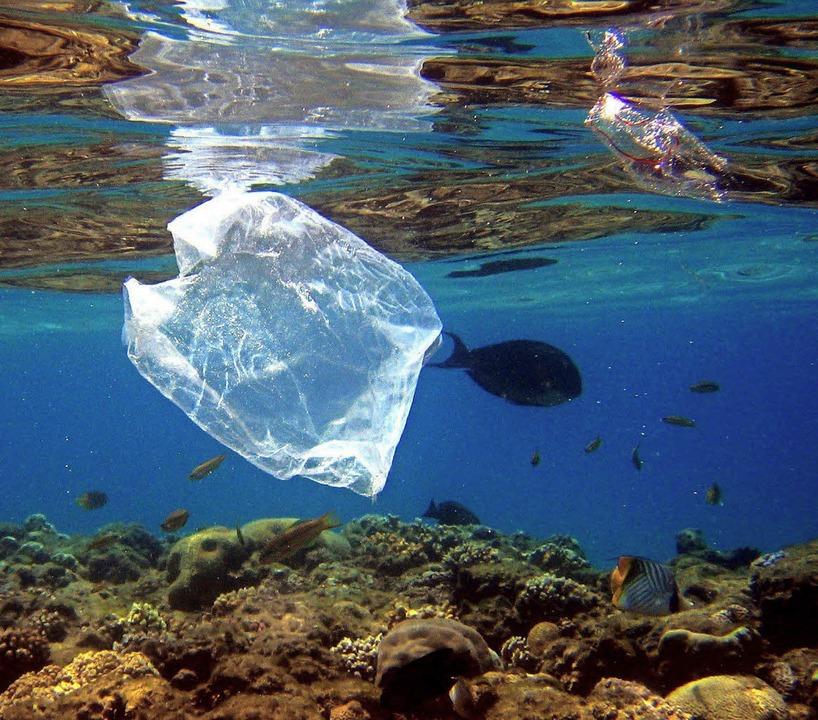 Plastikmüll im Meer – und zwar weltweit  | Foto: dpa