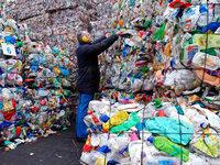 Hoffnungsträger: Bakterie als Plastikfresser