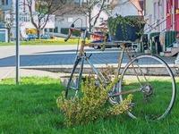 ADFC-Bewertung: Radler geben der Stadt die Note vier