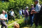 Fotos: Vor-Ort-Termin zur Waldflurbereinigung in Degerfelden