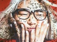 Bienenvolk verirrt sich in der Freiburger Innenstadt