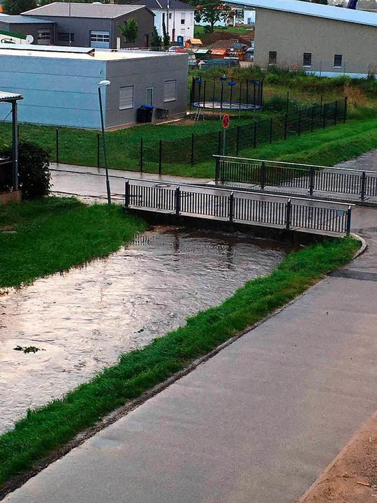 Hochwasser in Endingen  | Foto: Alex Hinz