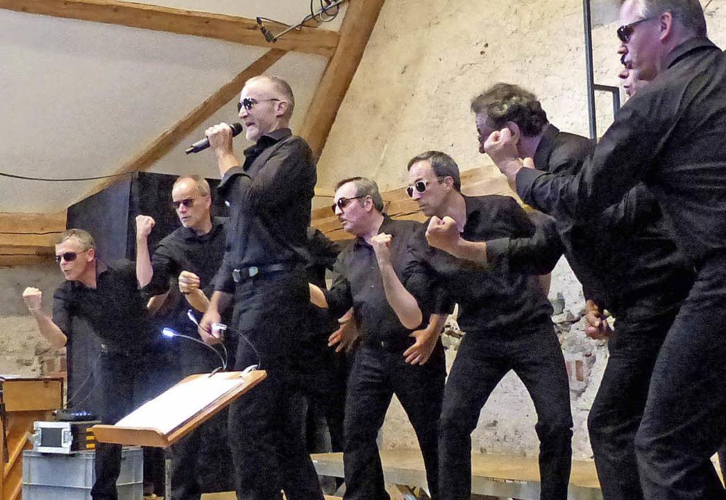 Ohrwürmer in Aktion    Foto: Barbara Odrich-Rees