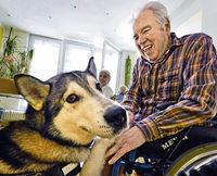 Besuch von Hund und Hase