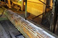 Fröhnder Klopfsäge: Zeitreise an der sägenden Mühle