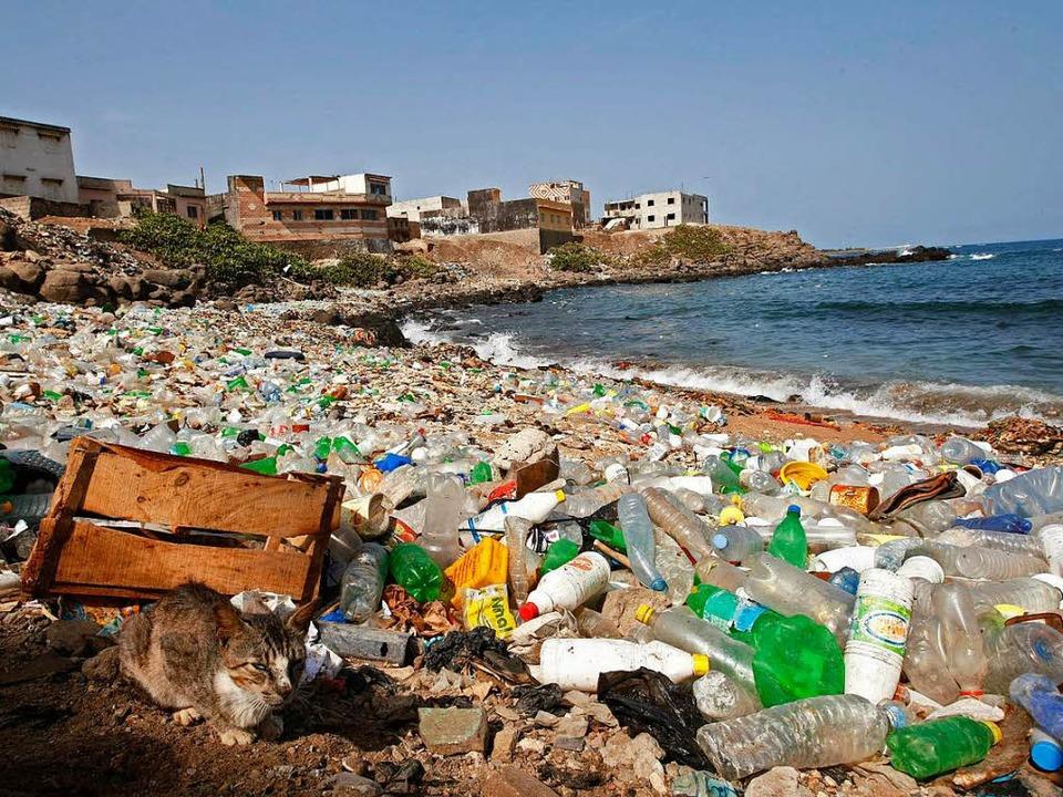 Immer mehr Plastikmüll verschmutzt die...m besten Fall an die Strände gespült.   | Foto: dpa
