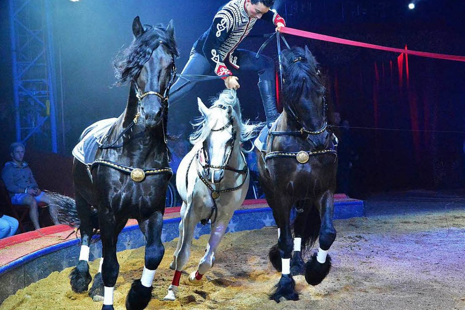 Menschen, Tiere, Sensationen: die Premiere des Schweizer Nationalcircus Knie in Basel. (Foto: Barbara Ruda)
