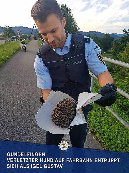 Das postete die Polizei auf ihrer Facebookseite nachdem der Igel gerettet wurde.  | Foto: Polizei