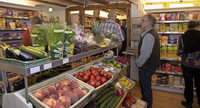 Hat ein Lebensmittelladen Zukunft?