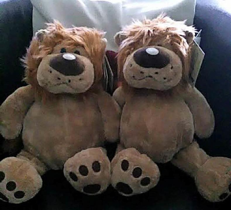 Zwei Plüschlöwen warten auf neue Besitzer.    Foto: privat