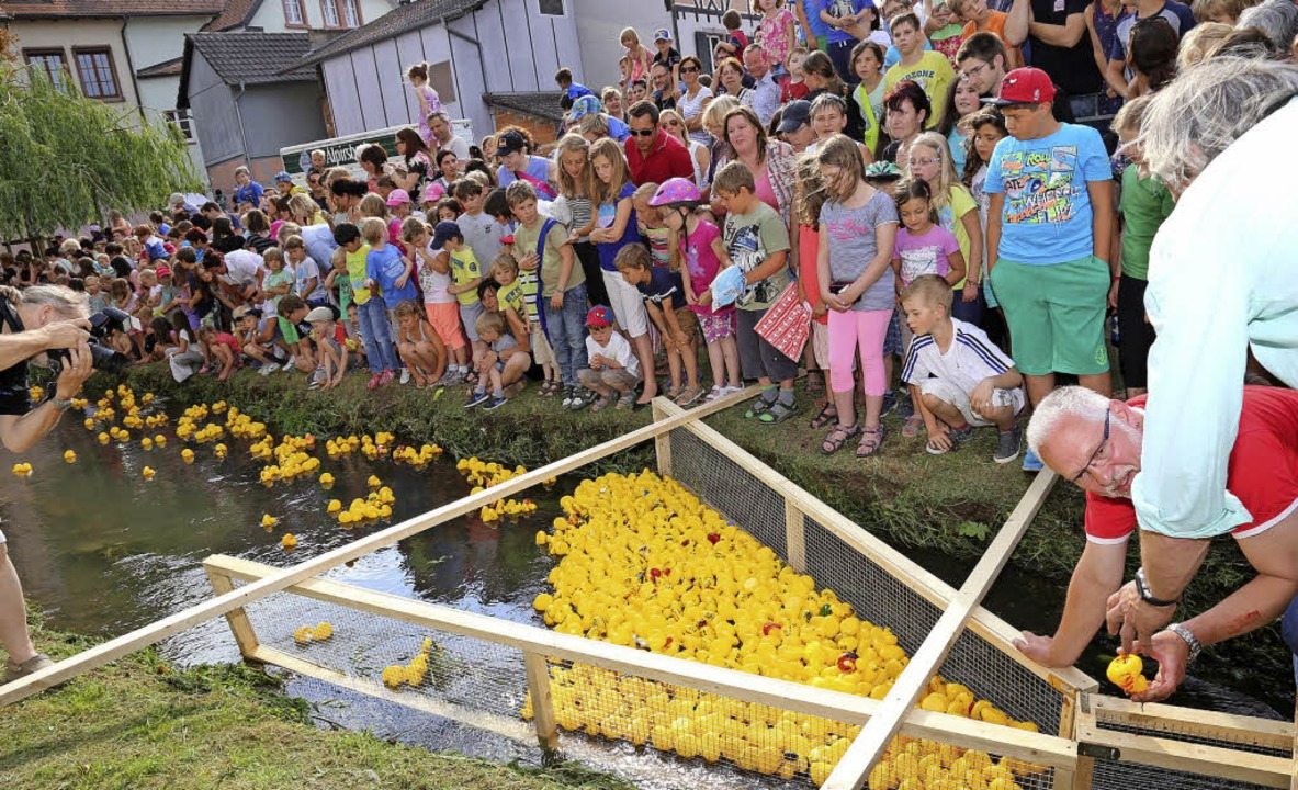 Das Entenrennen in Ettenheim ist beliebt bei Alt und Jung.   | Foto: Stadt Ettenheim
