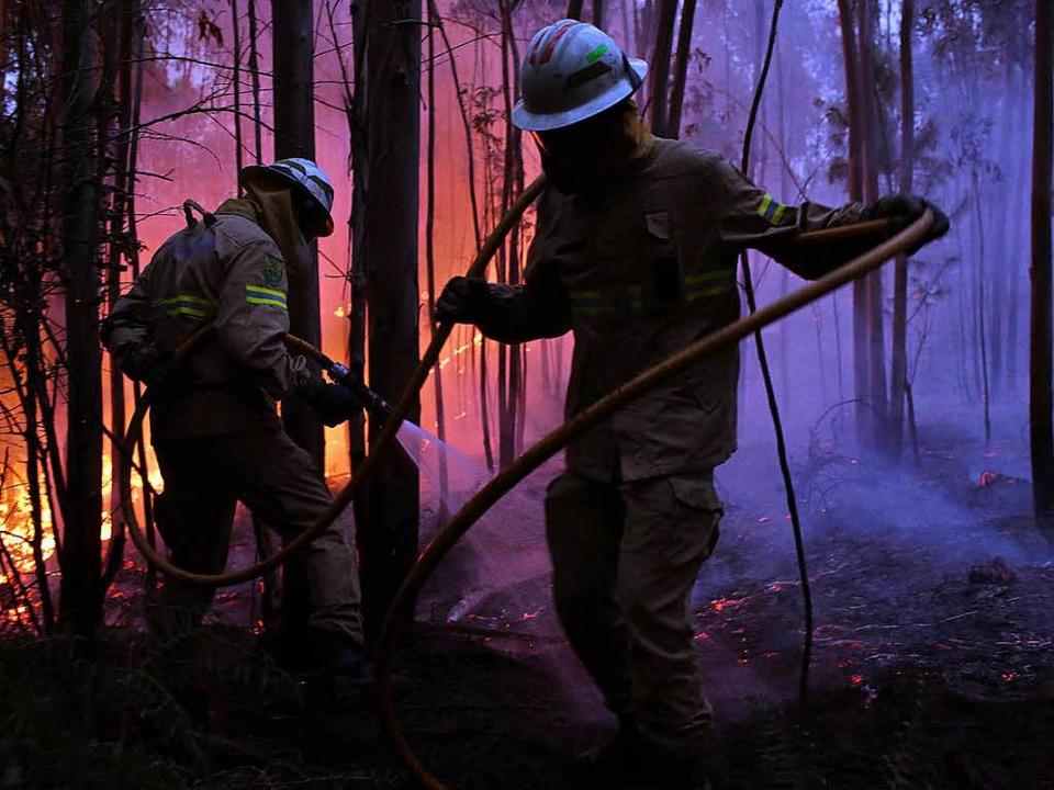 Feuerwehrleute der Republikanischen Na...den verheerenden Waldbrand zu löschen.  | Foto: dpa