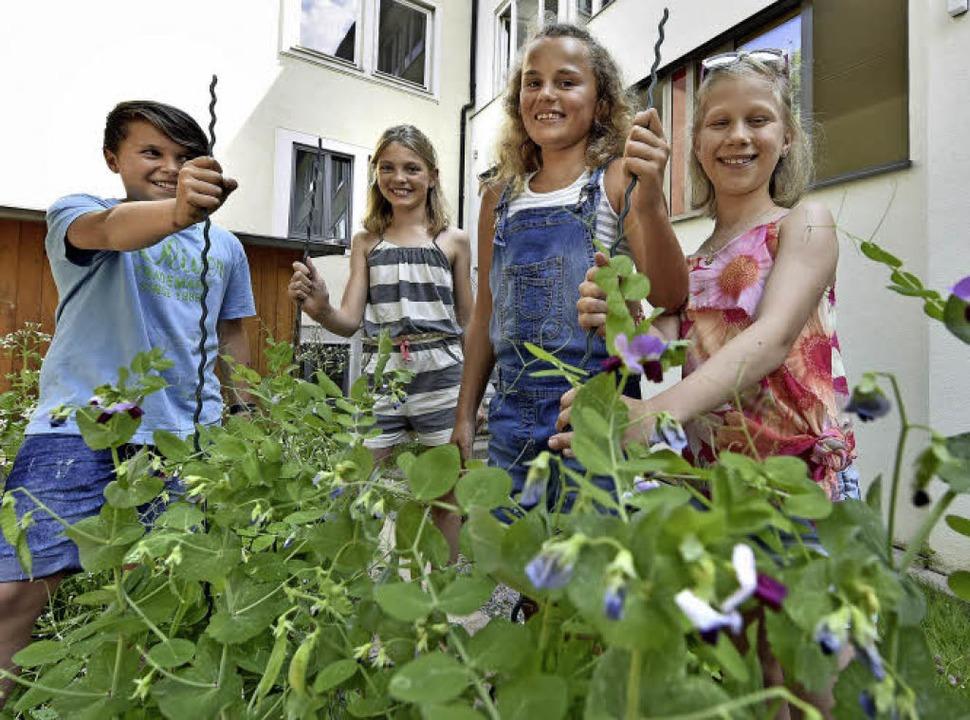 Die Schüler sind stolz auf ihre Zucker...Höher, Selina Pilz und Lilly Richter.   | Foto: Michael Bamberger