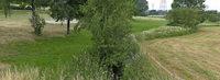 Tannenkircher Biotop wird bis Oktober angelegt
