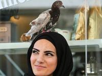 Junge Frau aus Lahr wird seit einem Jahr von Taube verfolgt