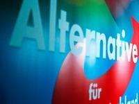 AfD sagt Demo in Offenburg ab: Angebotene Plätze gefallen nicht