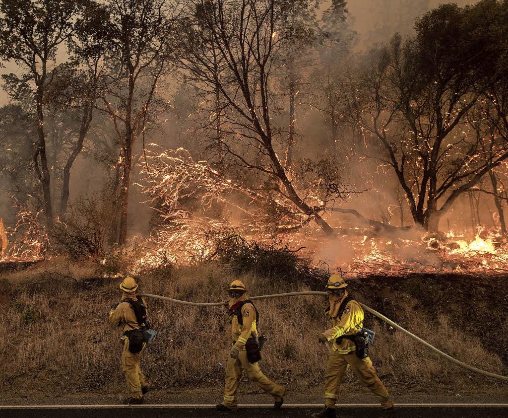 Waldbrände: Kanada und Kalifornien rufen Notstand aus