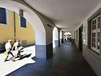 Diese Freiburger Häuser stammen aus der Nazizeit