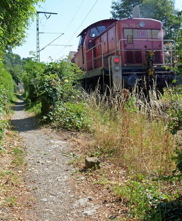 Den Fußweg entlang der S-Bahn-Linie in...alten einige Anwohner für gefährlich.   | Foto: Lauber