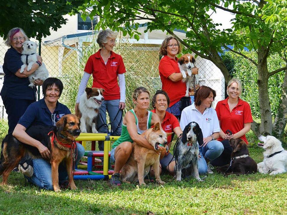 Die Besuchhunde und ihre Frauchen    Foto: Danielle Hirschberger