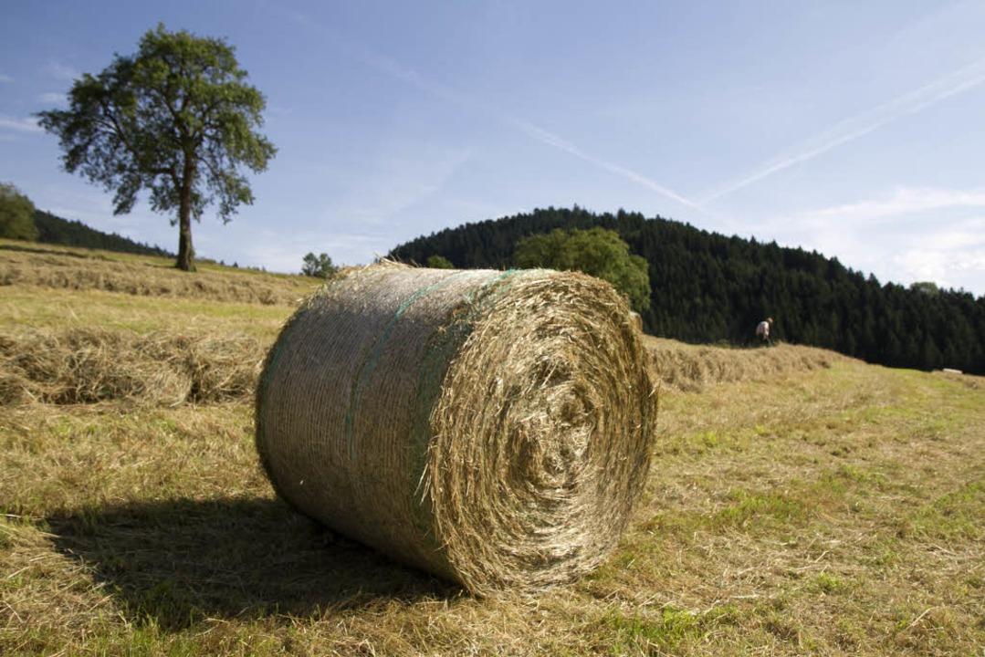 Heuballen überrollt Landwirt (Symbolbild)  | Foto: Daniel Fleig