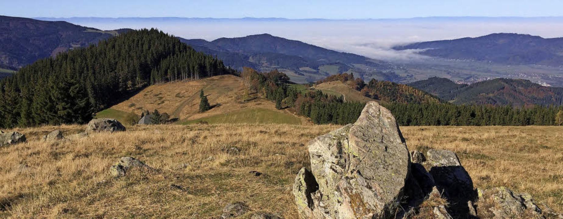 Blick vom Hinterwaldkopf   | Foto: SWV