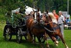 Fotos: Fahrertag in St. Märgen