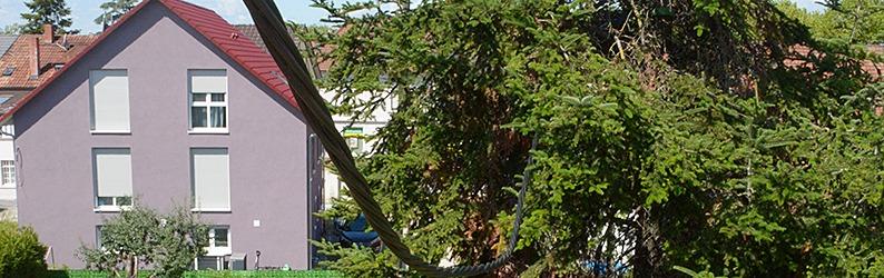 Maroder Strommast stürzt in Garten - Leitung hängt nun in einer Tanne