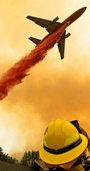 Forstwirt Alexander Held über Waldbrände