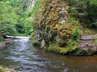 Im Schwarzwald kämpfen Rhein und Donau um ihre Existenz