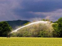 Wie sich der Umgang mit Wasser in der Landwirtschaft verändert hat