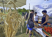 Agrikulturfestival zeigt ökologisch und sozial vertretbaren Konsum