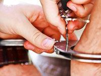Polizei nimmt mutmaßlichen Handtaschenräuber fest