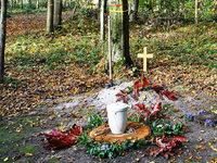 Unbekannte bauen illegale Mountainbike-Strecke durch Bestattungswald in Rheinau