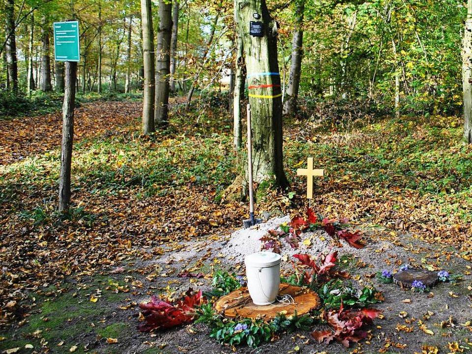 Unbekannte machten den Bestattungswald...zur Mountainbike-Strecke (Archivbild).  | Foto: rob