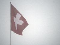 Polo Hofer ist tot - Schweiz trauert um Mundart-Ikone