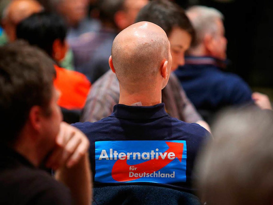 Wahlkampfveranstaltung der AfD in Mainz im Jahr 2016  | Foto: dpa