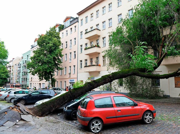 In Berlin stürzten aufgrund des Unwetters Bäume um.