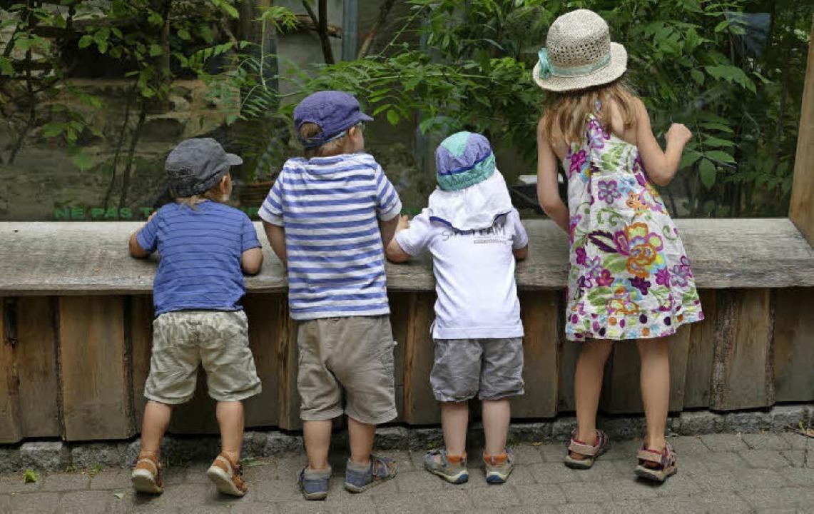 <ppp> </ppp>die Betrachter vor der Sch...einer sind als die Bewohner des Zoos!     Foto: Silke Kohlmann