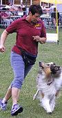 Miteinander von Hund und Mensch