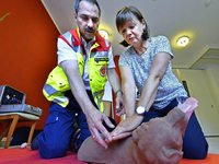 Was Hundehalter in Erste-Hilfe-Kursen lernen