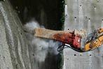 Fotos: Feierlicher Tunnelanschlag in Rheinfelden