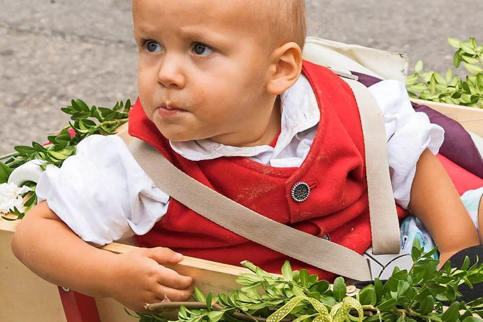 Der jüngste Trachtenträger des Jubelvereins im Bollerwagen. (Foto: Wilfried Dieckmann)