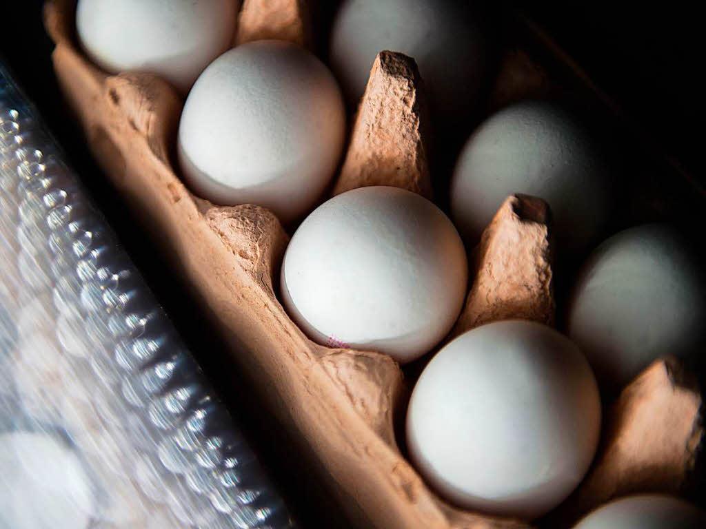 Verseuchte Eier: Behörden wussten seit Juni von Pestizid-Belastung